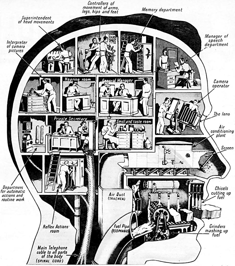 US-Magazin-Illustration, 30er- bis 40er-Jahre
